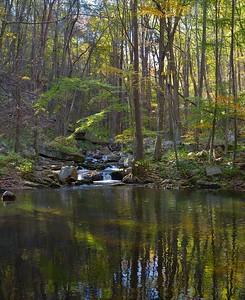 Mill Creek, 15 October 2015