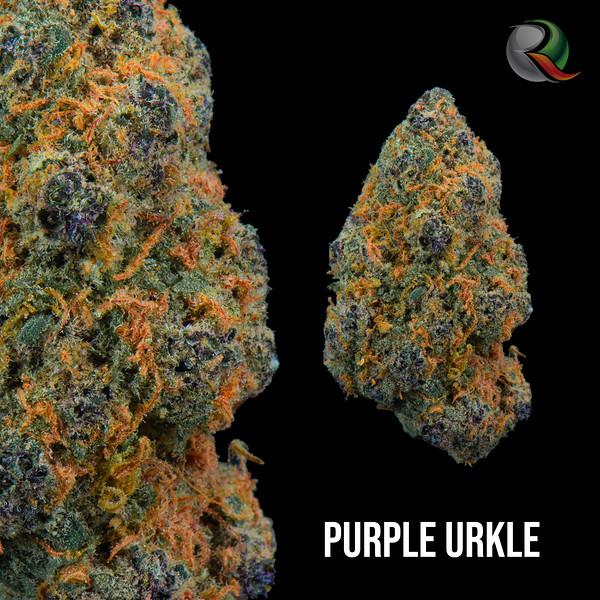 purple urkle.jpg