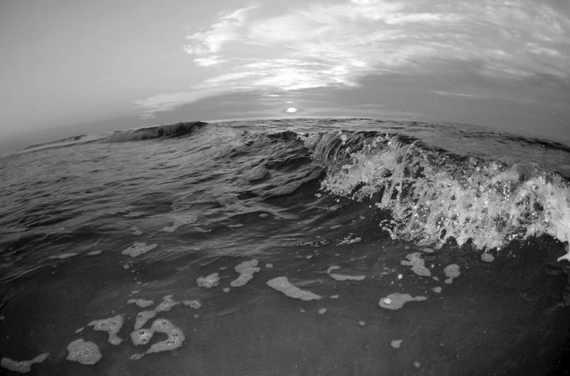SCOPe_Huntington Beach State Park OCT 2012_7 B&W.jpg
