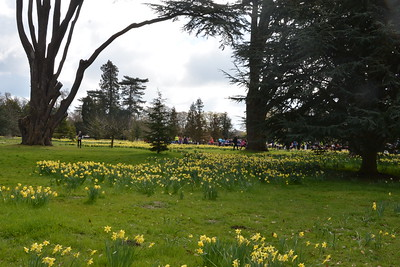 Ickworth Park 17th April 2016