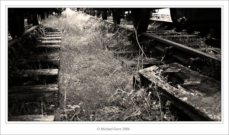Dock Tracks (68405230).jpg