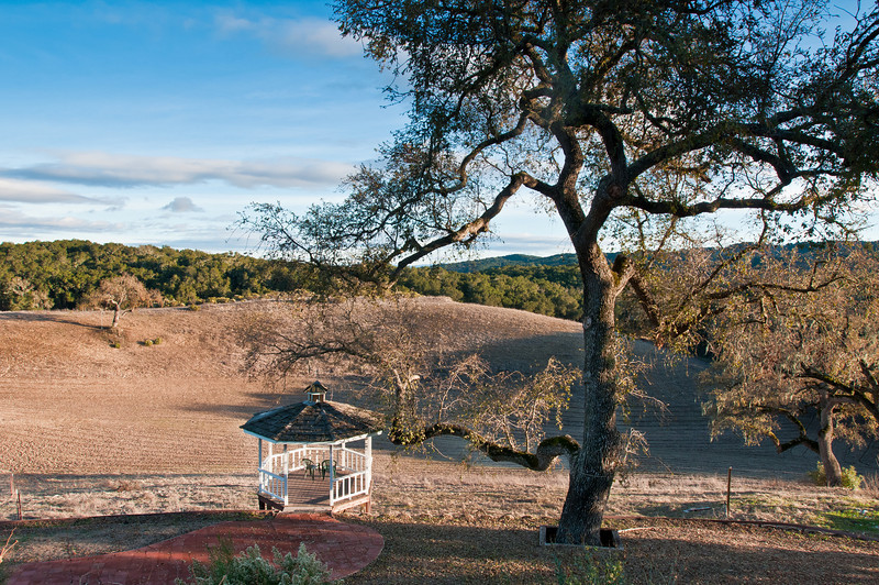 The view out our Hacienda -- the Dancing Deer Farm