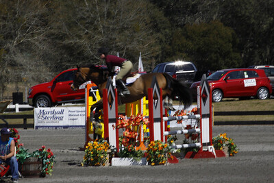 Hunter Jumper horse competition Florida