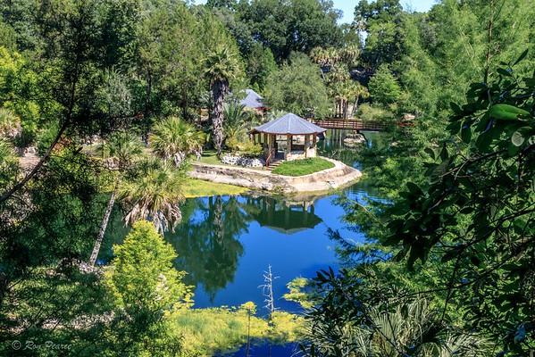 Cedar Lakes Woods & Gardens,  Williston, Florida