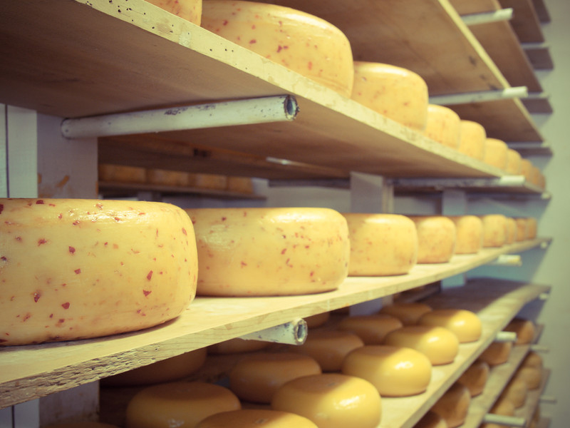 gouda lady wall of cheese.jpg
