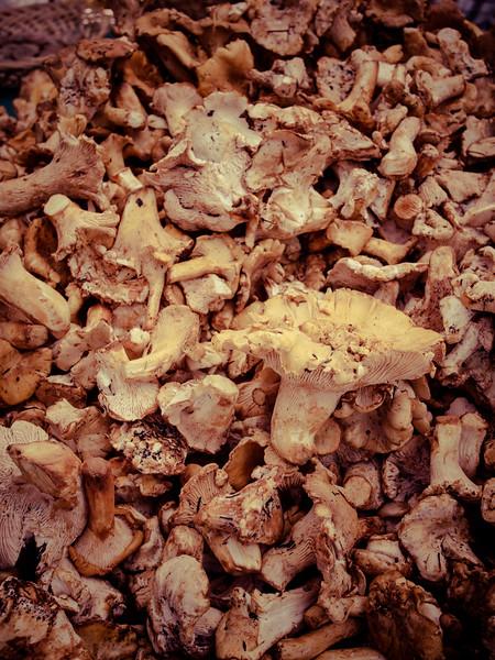 market mushrooms.jpg
