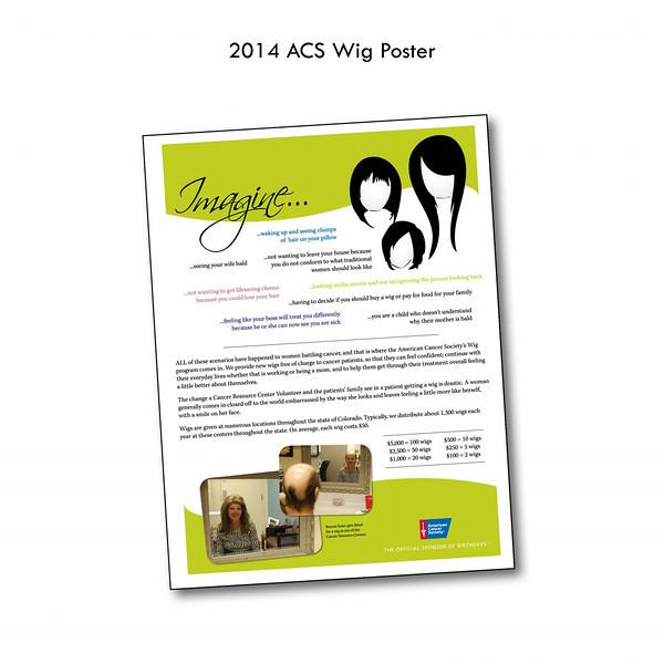 2014 ACS Wig Poster.jpg