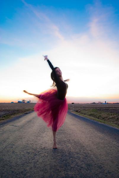 Dance Landscapes