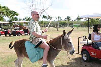 rich-donkey-polo