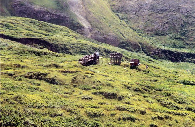 Alaska  0990 BR 55.jpg