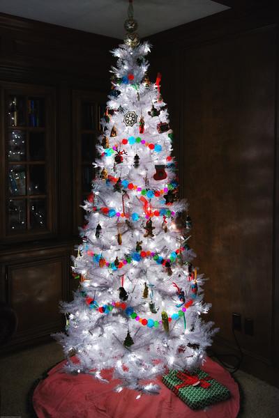 Tree DSC_4519.jpg
