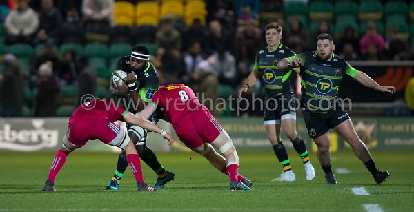 Northampton Saints vs Harlequins, Anglo Welsh Cup, Franklin's Gardens, 4 February 2018