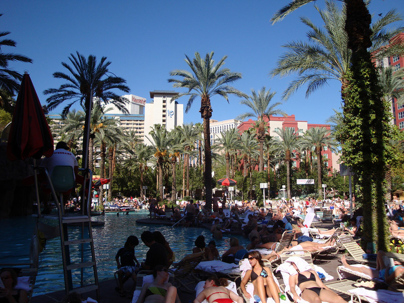 The pool at The Flamingo.