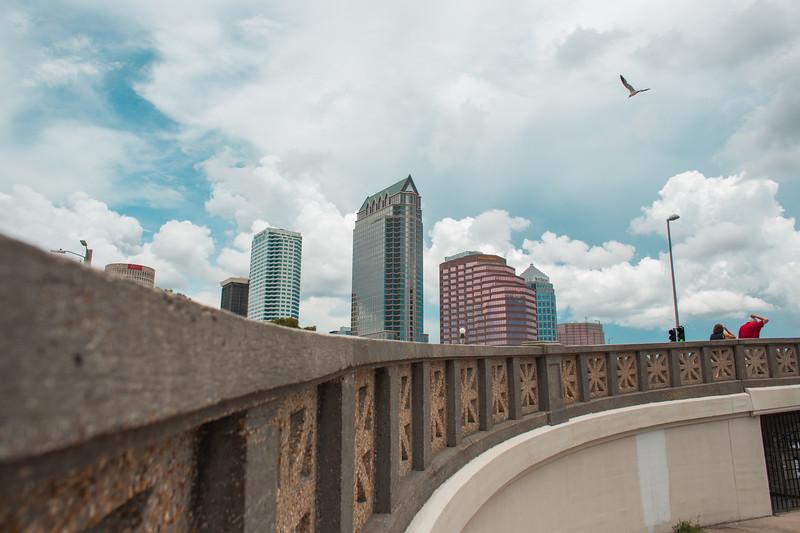 Tampa_Social-10.jpg