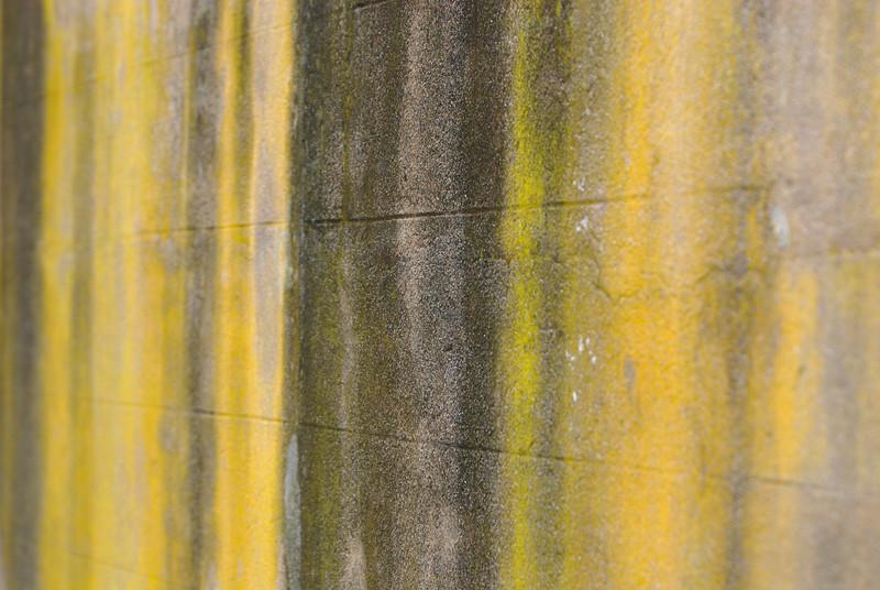 TKirby-2011-09-23-0030.jpg