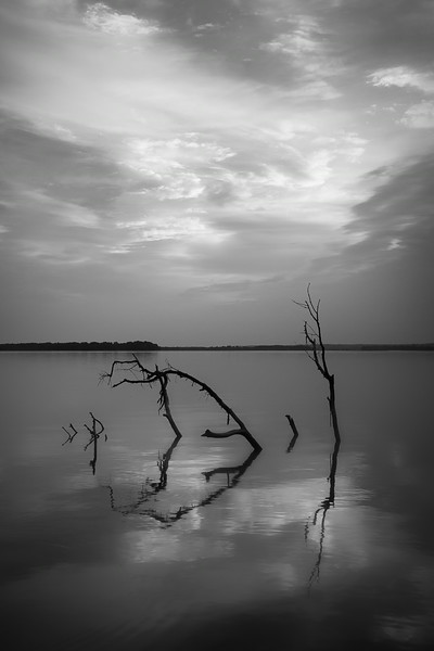 20140829Reelfoot023-Edit.jpg