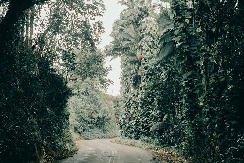 Hawaii20-372.jpg