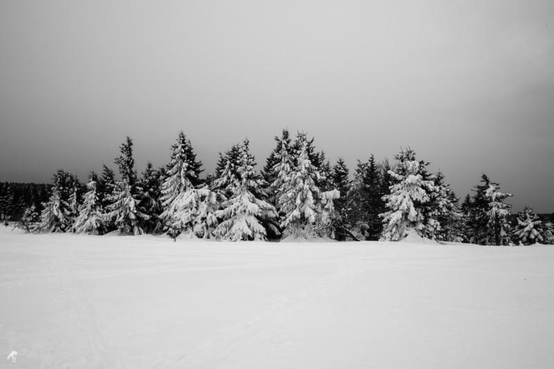 Oberhof, Germany