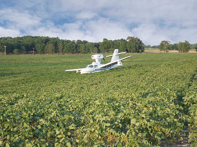 Plane in a beanfield