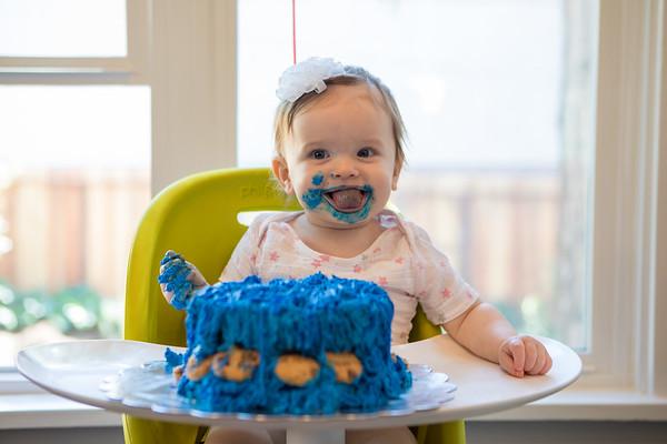 Adaline's First Birthday