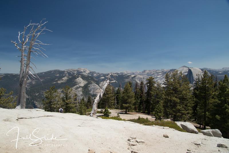 Yosemite 2018 -52.jpg