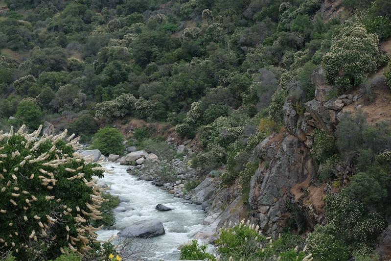 California Day 6 Kings Canyon 05-30-2017 89.JPG