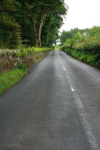 The Back Road.jpg