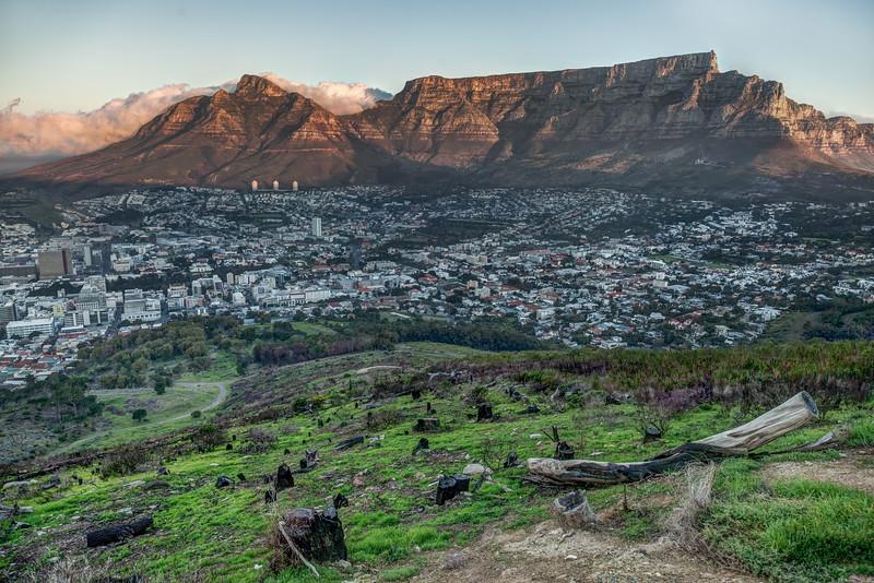 Cape Town-14.jpg