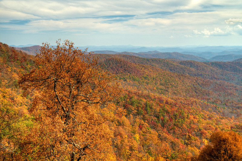 Fall Colors on the Blue Ridge Parkway in NC