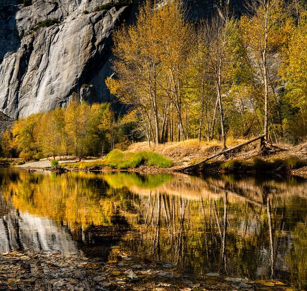 Cliffside Reflections - Yosemite