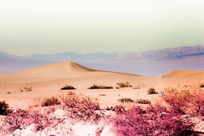 Desert Times of Day