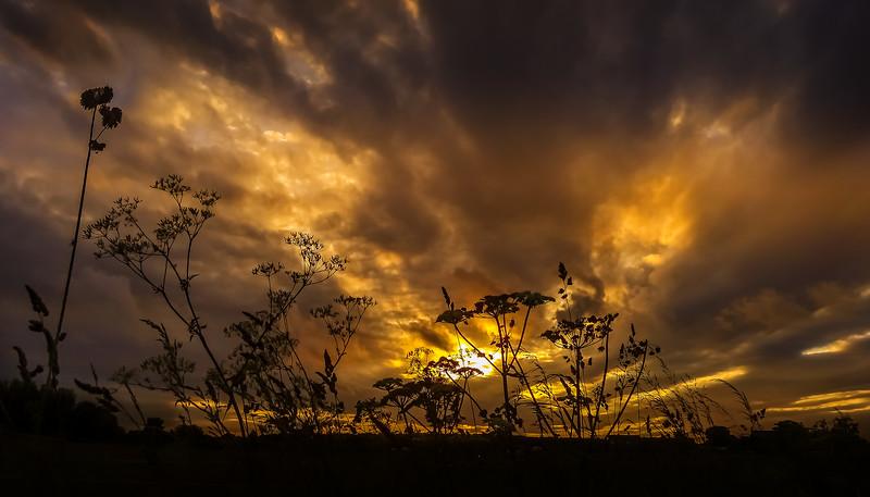 Sunrise and Sunset (31).jpg