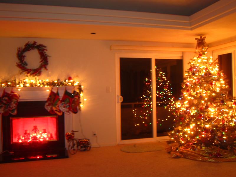 Hawaii - Playing with Light Christmas-15.JPG