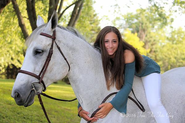Tal Horses