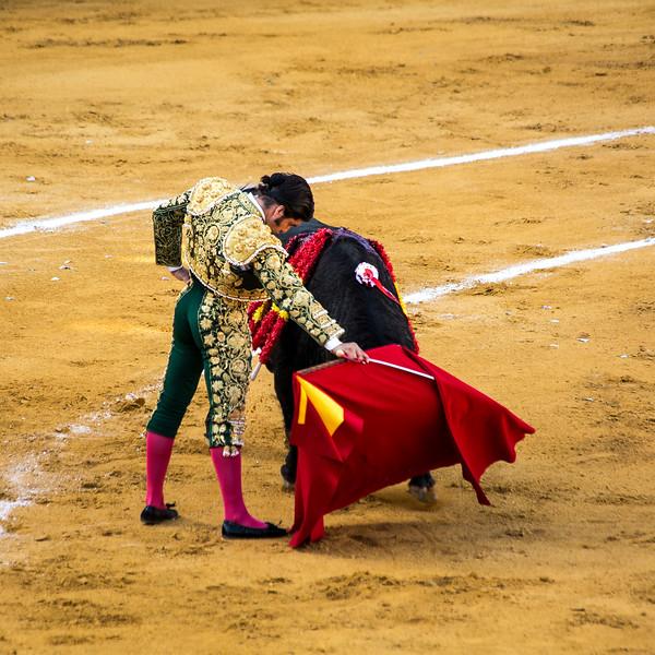 Bullfight17.jpg