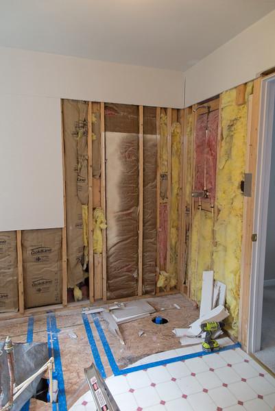 Bathroom Mod Blog One - Demolition