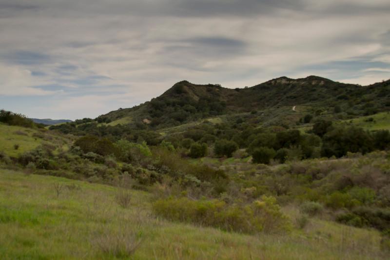 Mountain Path Family Hike-9.jpg