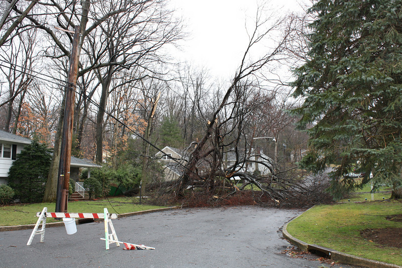 March Nor Easten Storm 2010 Aftermath through out Orange County NY , Bergen Passaic & MorrisCounty NJ