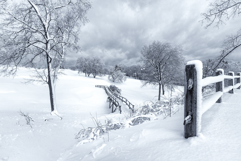 Winter in New England V