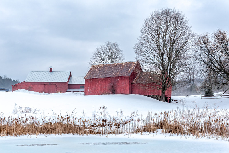 Red Barns & Pond