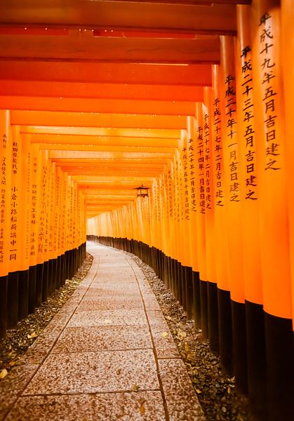 Torii Gates in the Rain at Fushimi Inari-taisha, Kyoto Japan