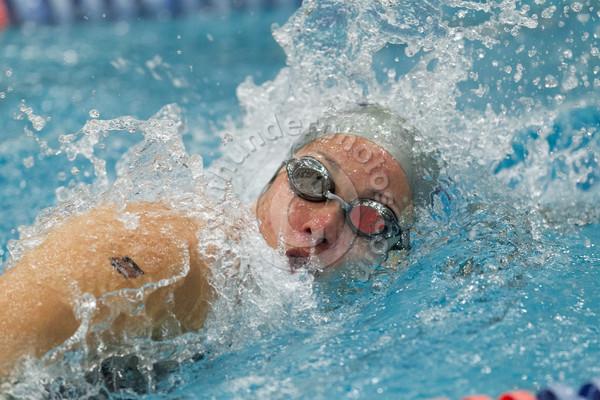 Wheaton College 2015 Swimming Invitational