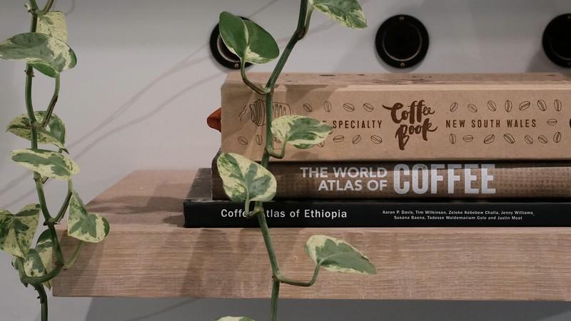 shelf-book.mp4