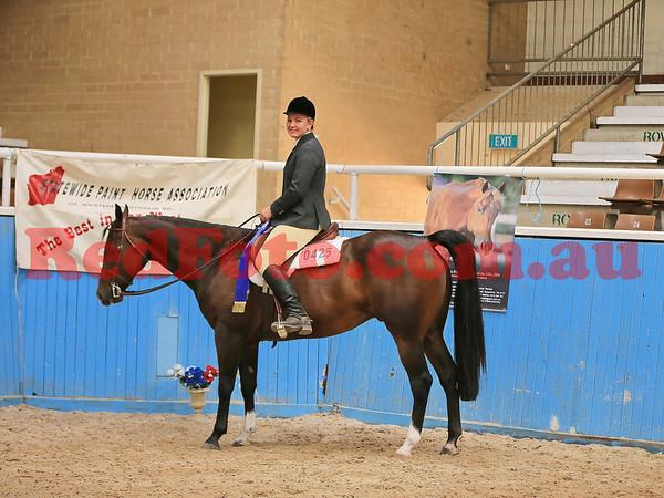 2014 03 01 WA Paint Horse State Championships English Ridden