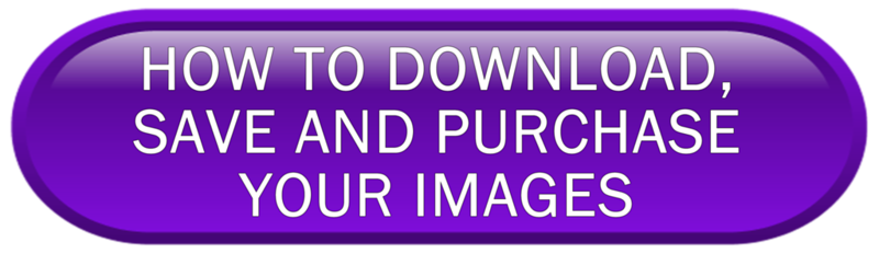 download and save images png.png