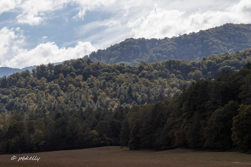100818.  Off to Cataloochee.  This is one of the vistas from around the Caldwell Homestead.