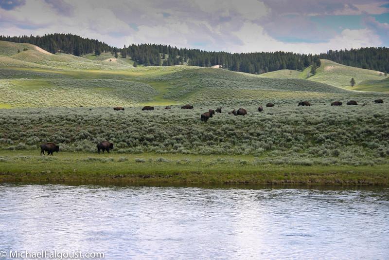 Yellowstone-118.jpg