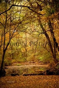 Banita Creek111 copy