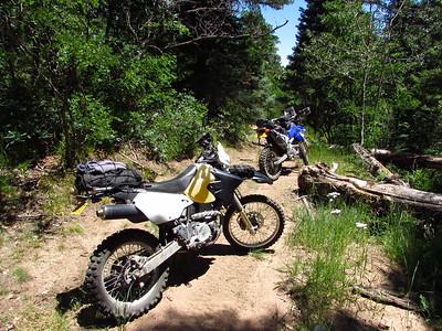 Jemez Mtns. - West Jemez DS Ride  7-29-19