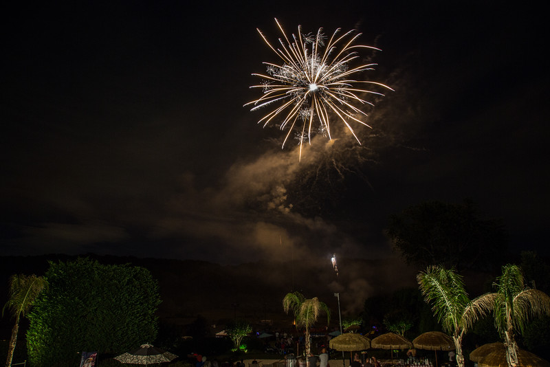 7-2-2016 4th of July Party 0937.JPG